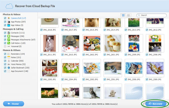 retrieve photos from iCloud screenshot
