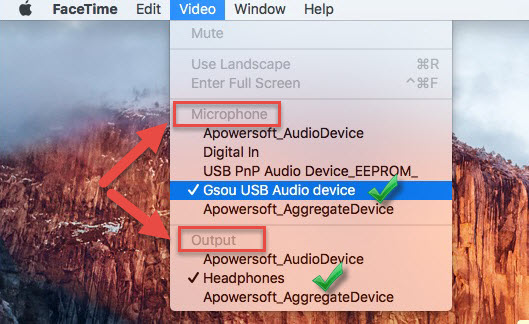 FaceTime audio setting